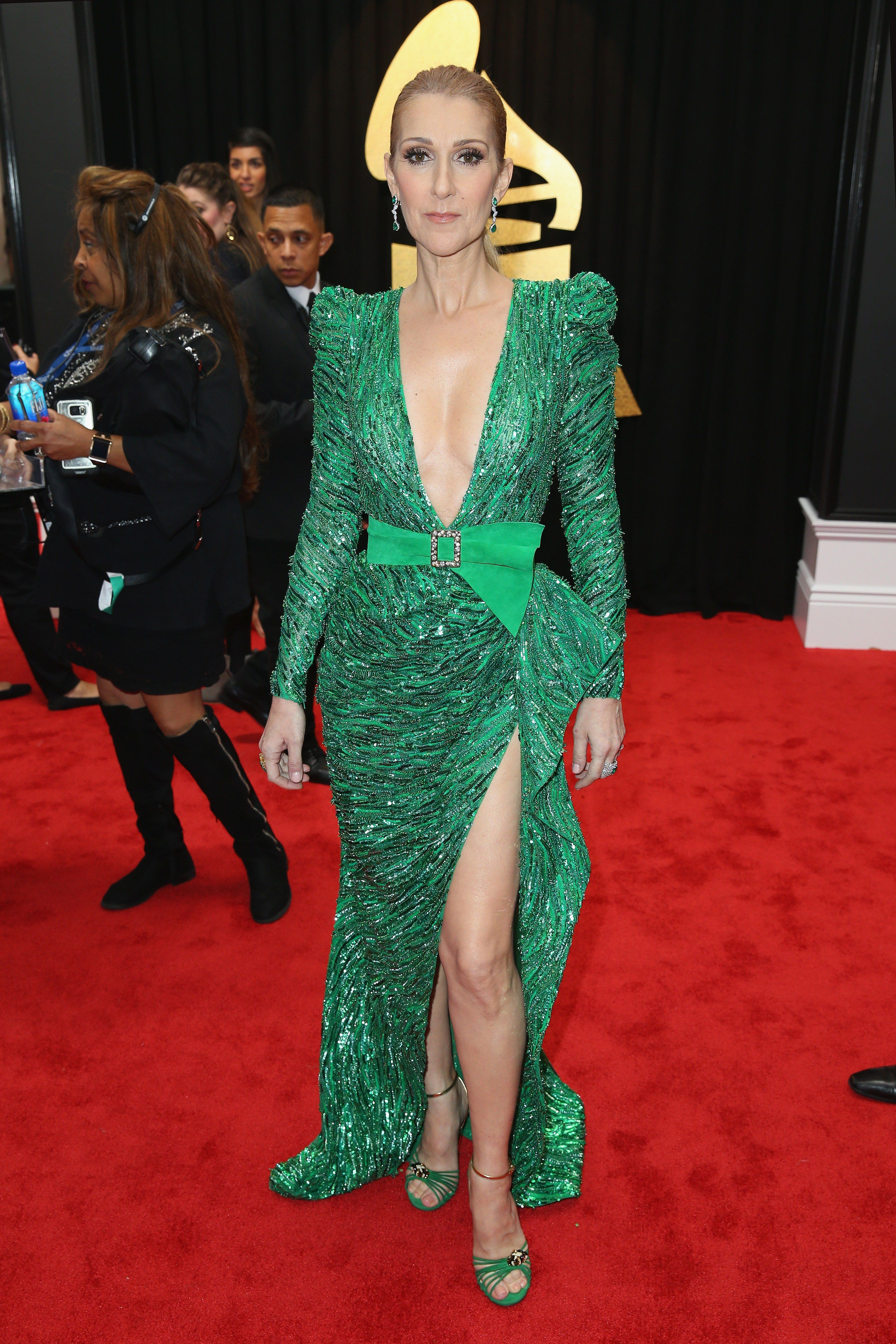 Grammys 2017: See What Everyone Wore on the Red Carpet ...