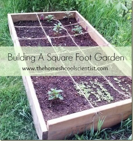 How To Build A Square Foot Garden Homeschool Homeschoolhelp Homeschooltip Homes Square Foot Gardening Square Foot Gardening Layout Gardening For Beginners