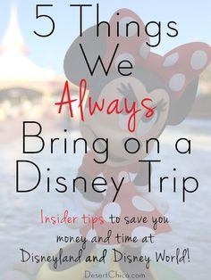 3336dda5c0 5 things we always bring on a Disney trip  Tips from a Disney Insider!