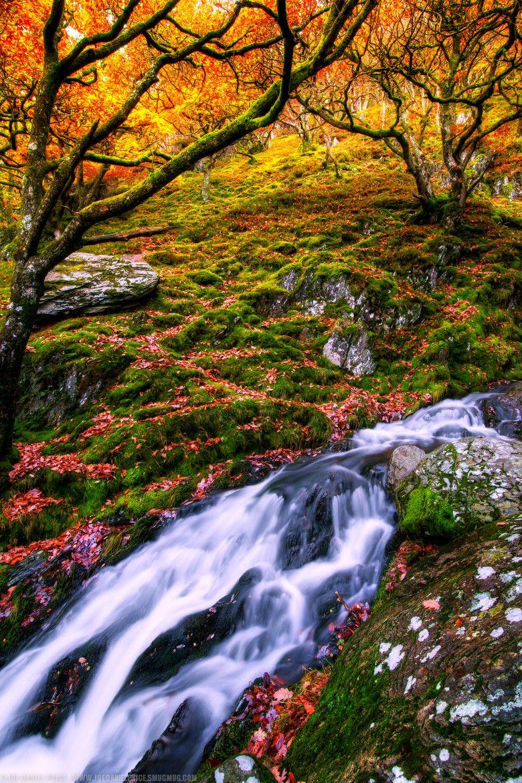 Photo Waterfall at the Elan Valley, Rhayader, Wales par Joe Daniel Price on 500px