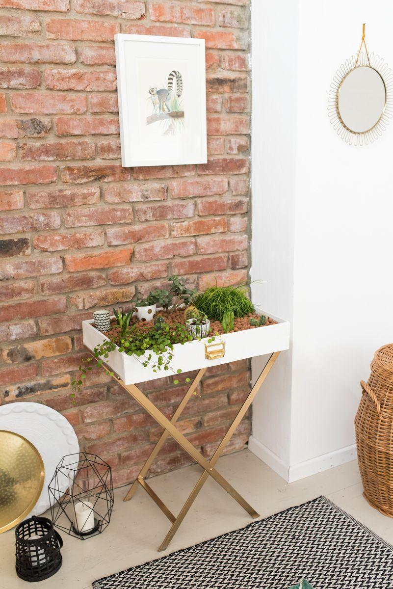 Indoor Garten diy mein kleiner indoor garten