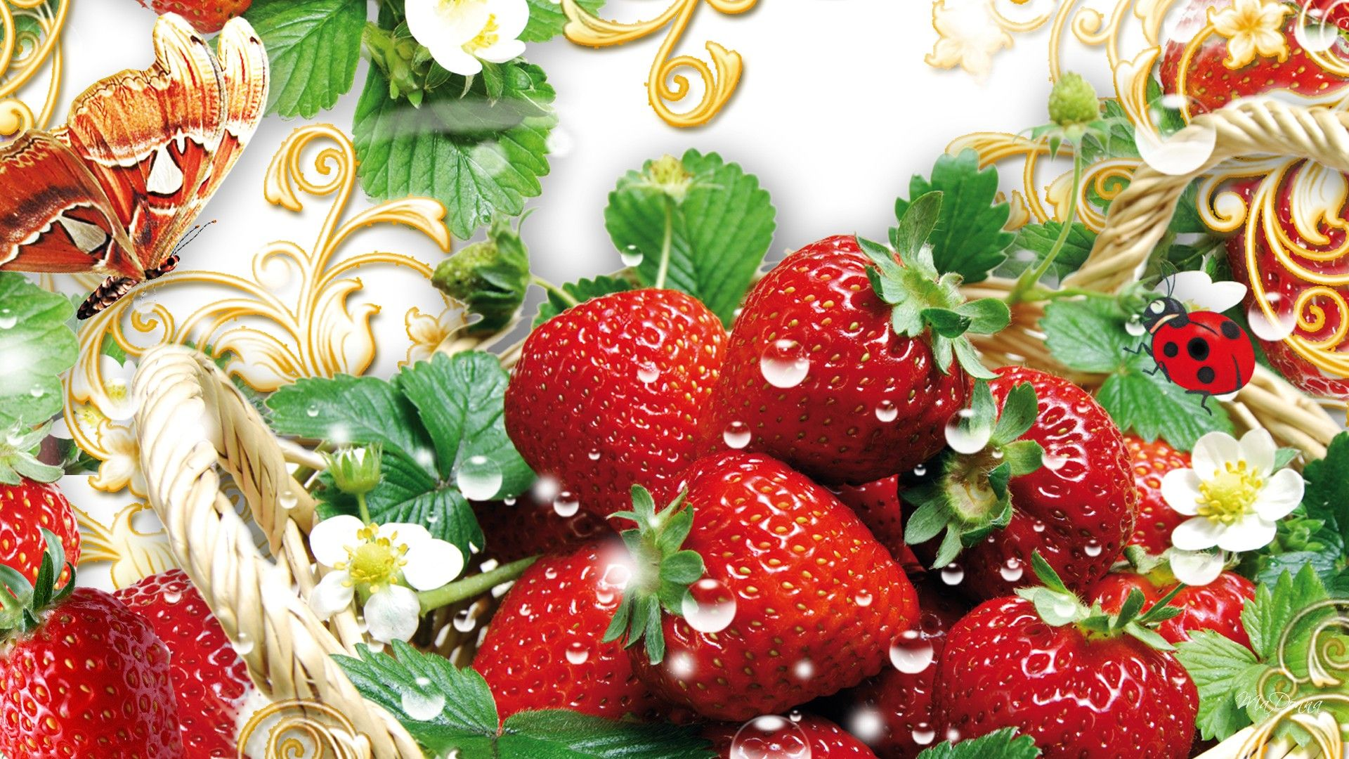 Flower With Strawberry Hd Wallpaper Free Download Wallpaper Free Download Strawberry Hd Wallpaper
