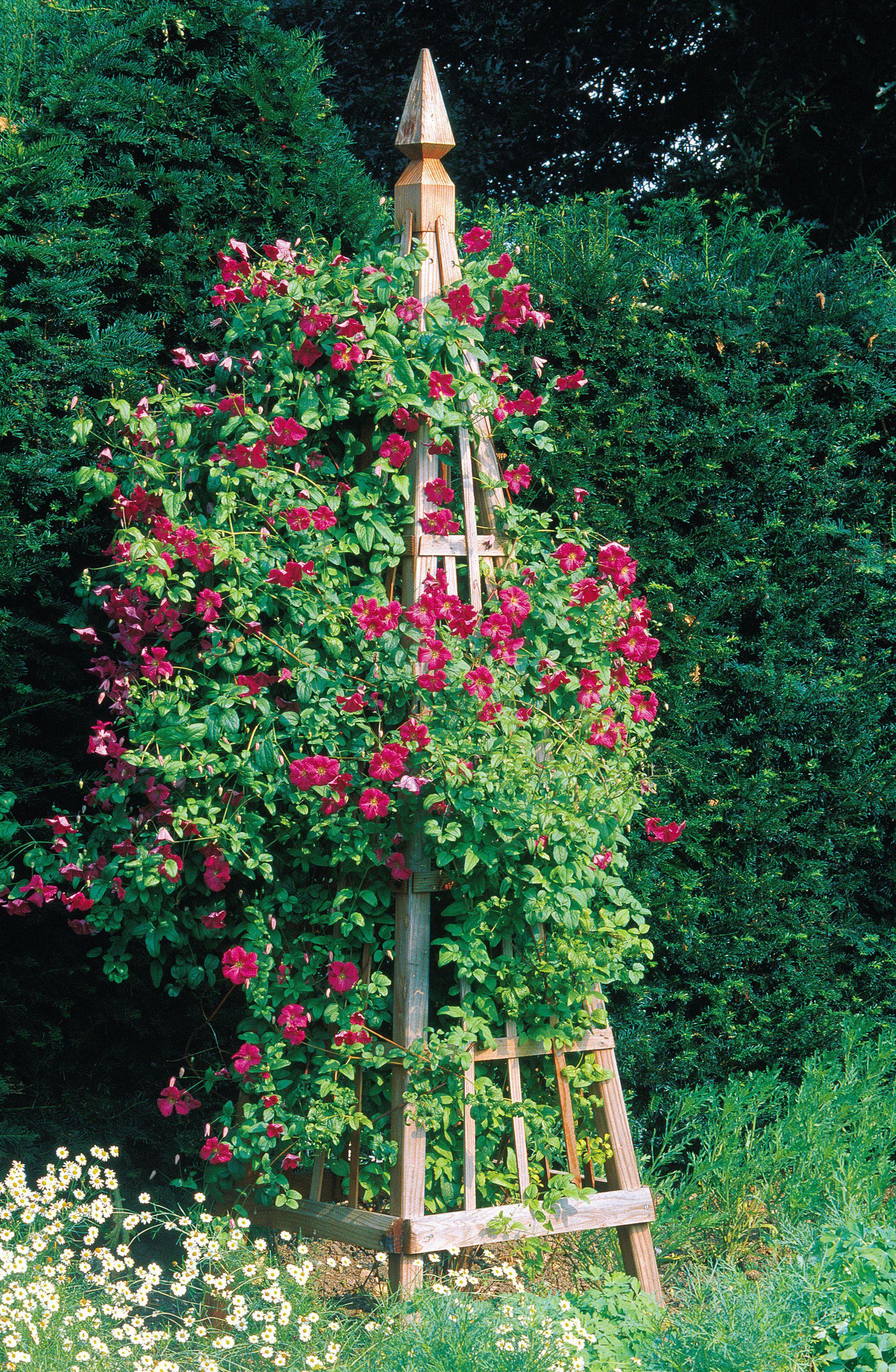 Build a Garden Obelisk Garden archway, Sloped garden