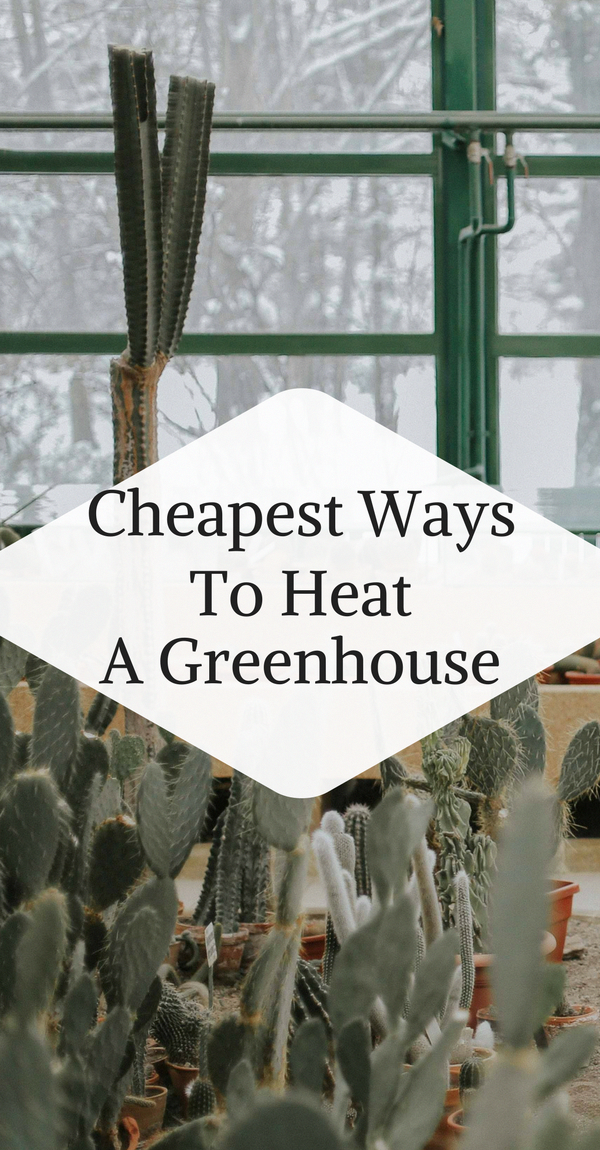 DIY Greenhouse ideas #DIYGreenhouseideas