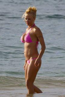 Anderson bikini Pamela pink