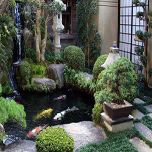 taman kolam ikan mungil - griyaminimalis   desain