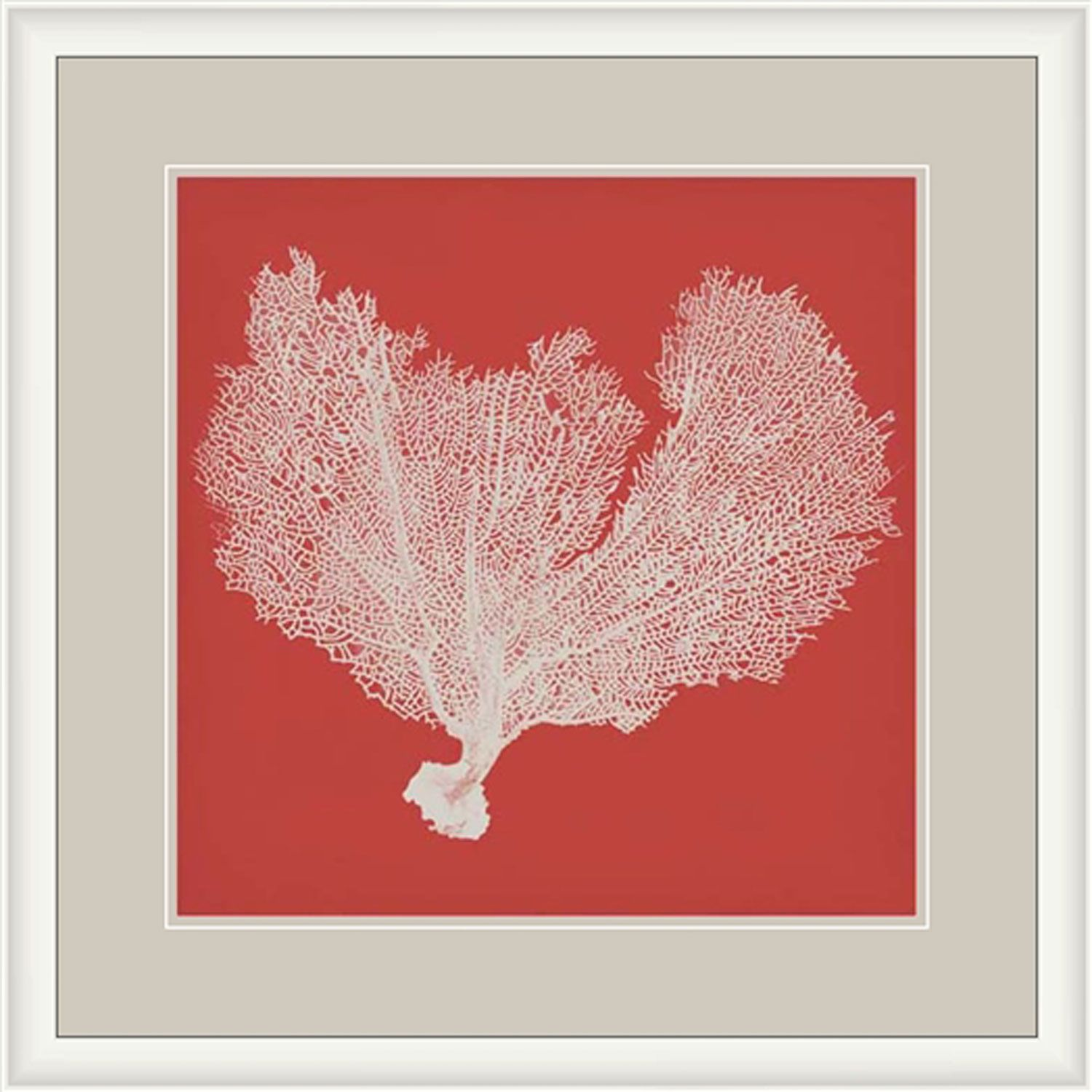 Surya sea fan on coral 29 x 29 inch print art walls coral and fans sea fan on coral 29 x 29 inch print surya wall art wall art home amipublicfo Images
