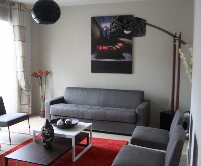 Photo Deco  Salon Gris Moderne AppartHotel Aime A Paris Deco