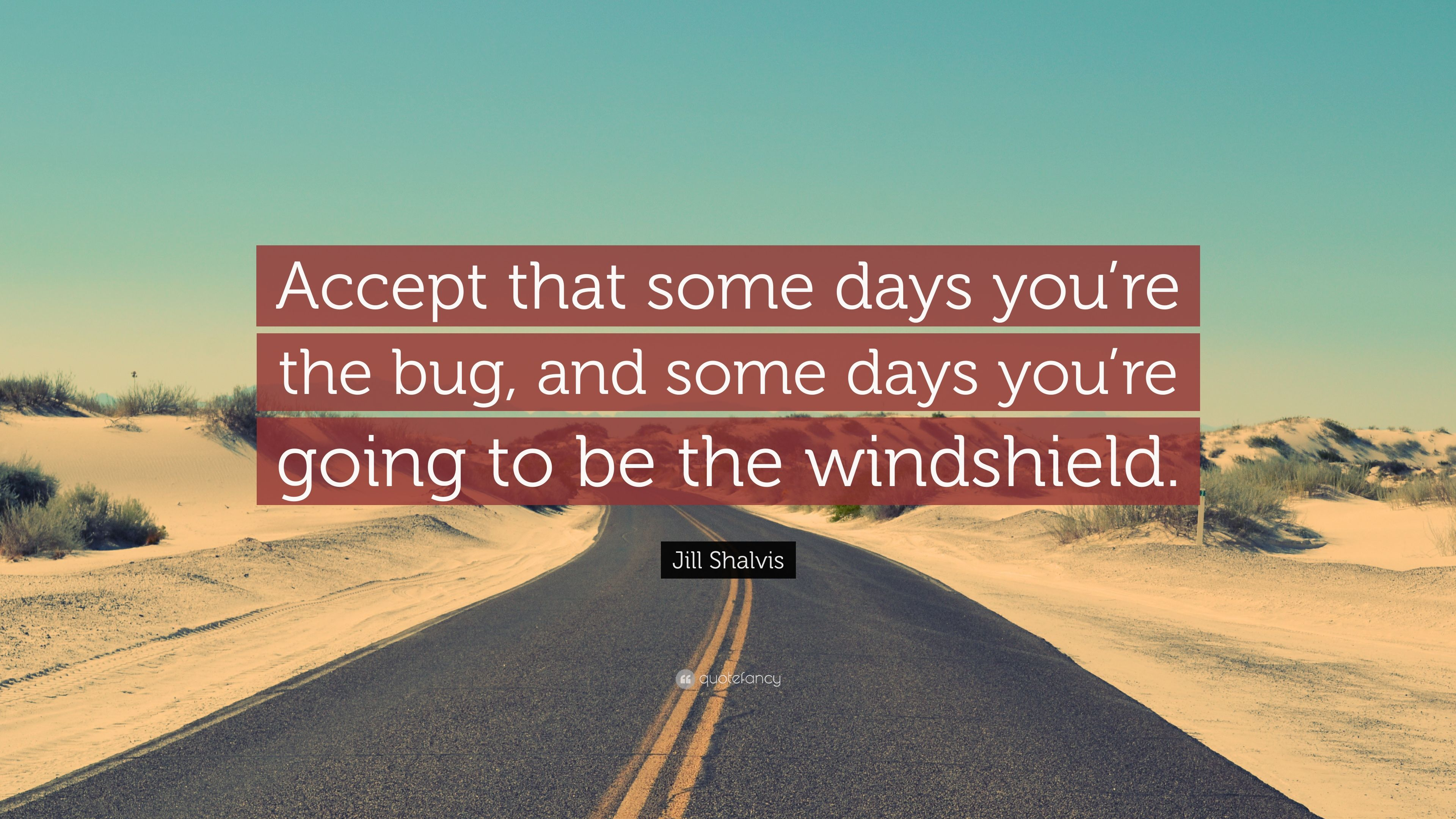 """Jill Shalvis Quote: """"Accept that some days you're the bug, and some days you're going to be the windshield."""""""