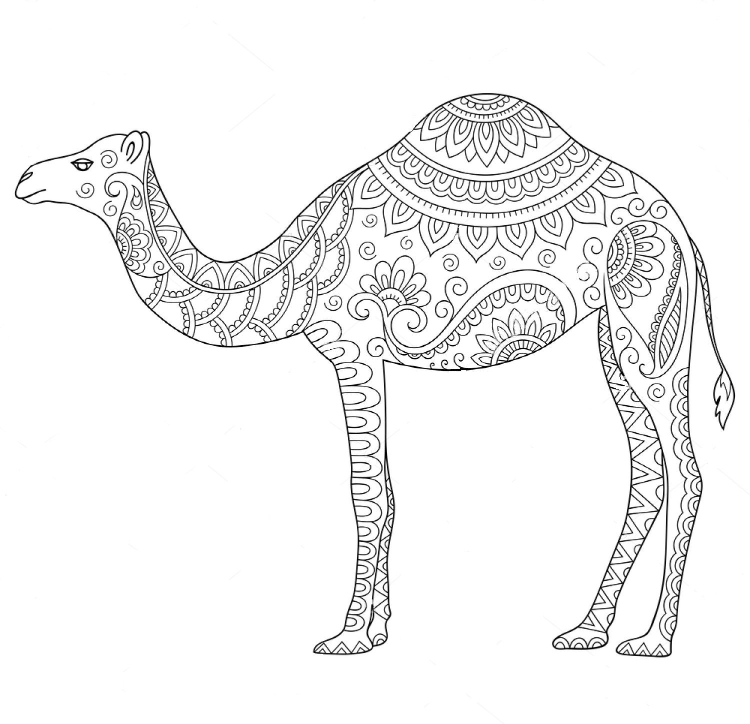 Camel Zentangle Coloring Page