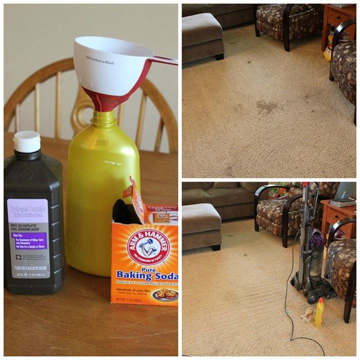 The best carpet cleaner more commercial carpet cleaning