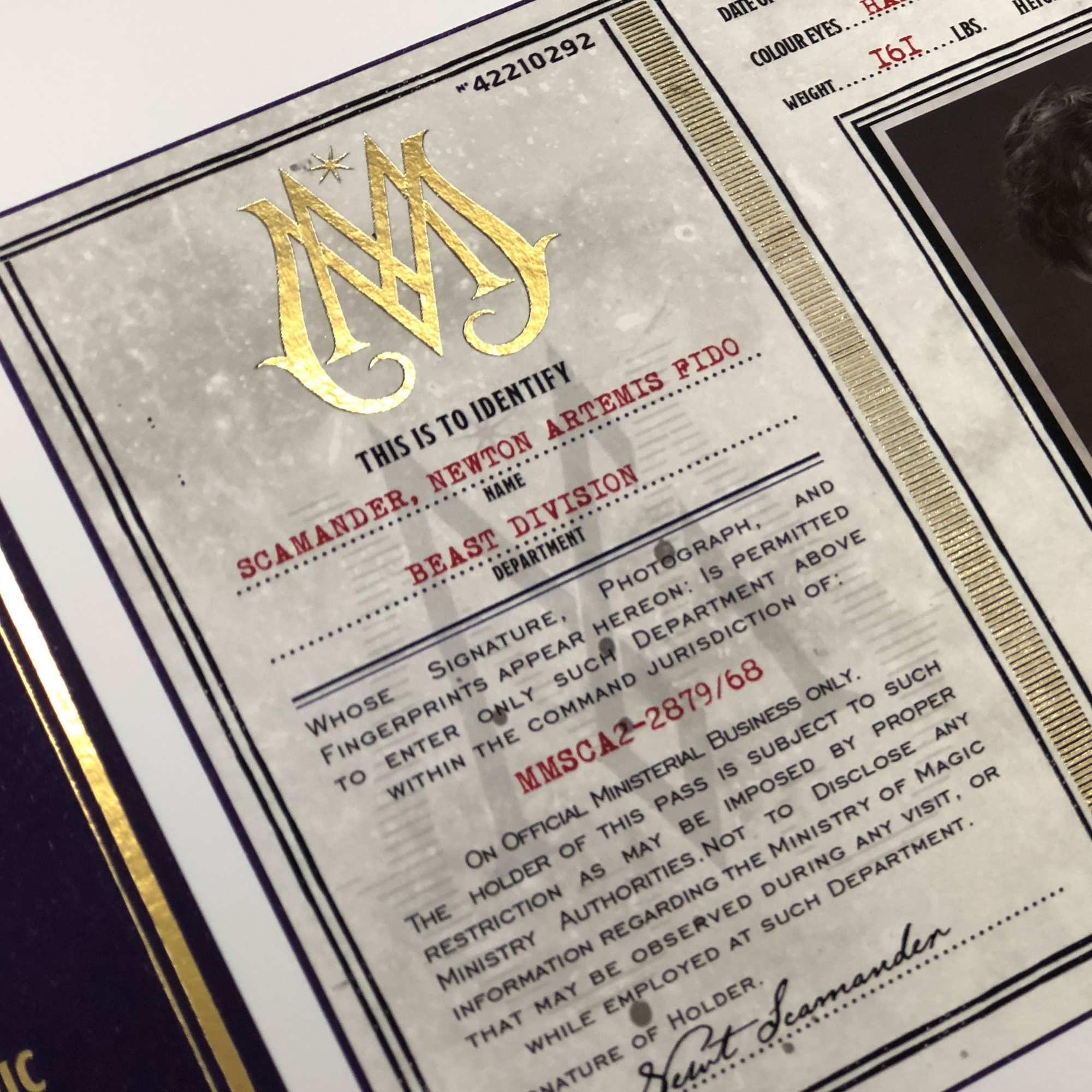 Newt Scamander Ministry Of Magic Id Print Minalima Ministry Of Magic Newt Scamander Scamander