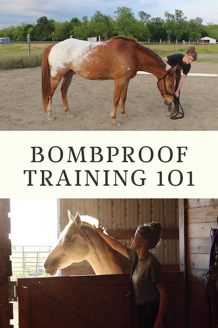 Is Your Horse Ready For Anything If Not Check Out Our Complete Guide For Bombproofing Your Horse Horsetraining Hors Horse Training Horses Horseback Riding