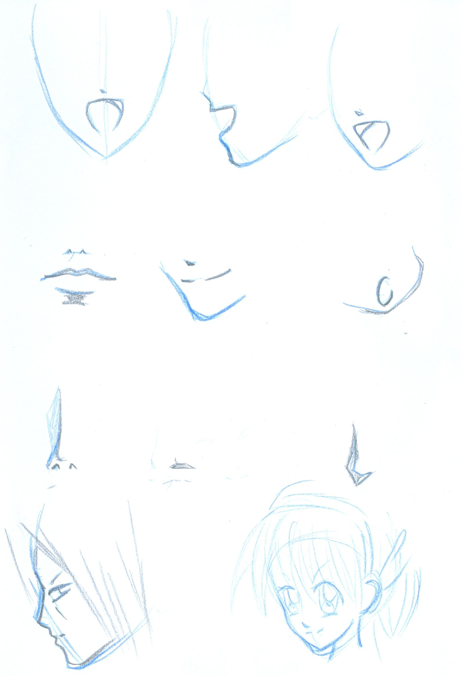 mouth_and_nose_tutorial_by_hu_ky.jpg (1592×2326)