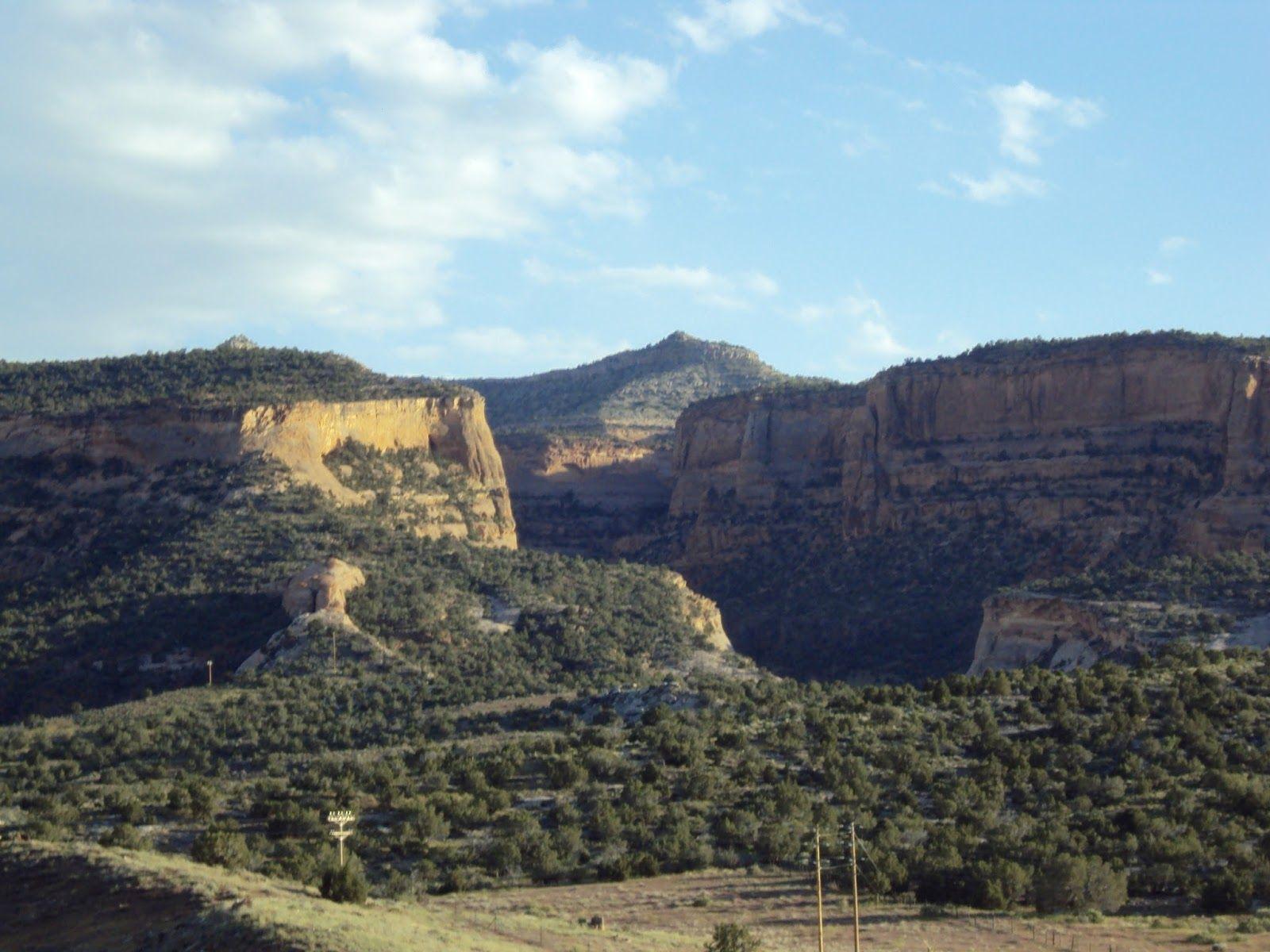Amy's Creative Pursuits: Dinosaur Hill, Fruita, Colorado
