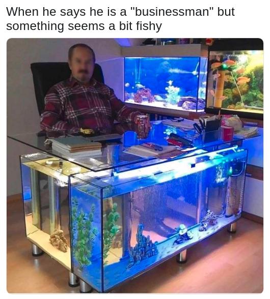 A Dumpster Of 95 Memes For You Garbage People Aquarium Cool Fish Tanks Fish Tank