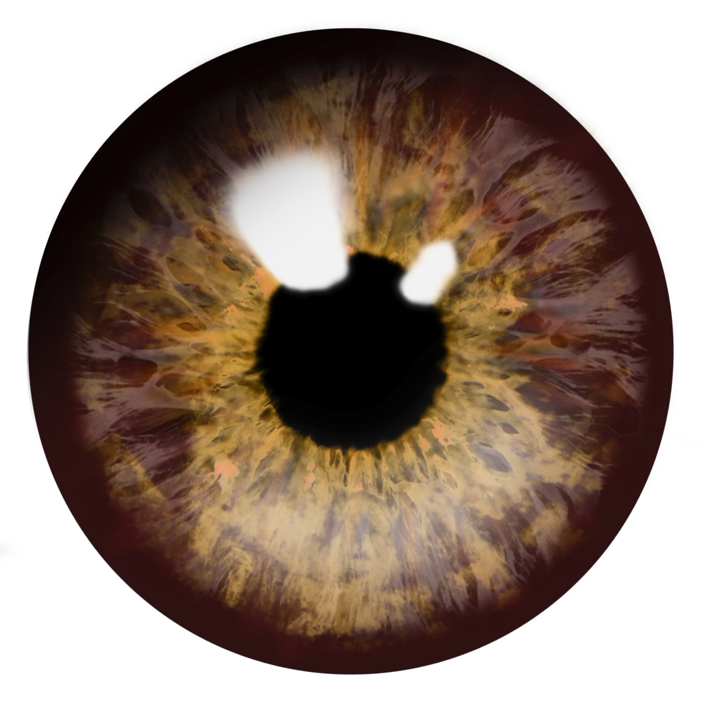 Brown Eye Lens Png