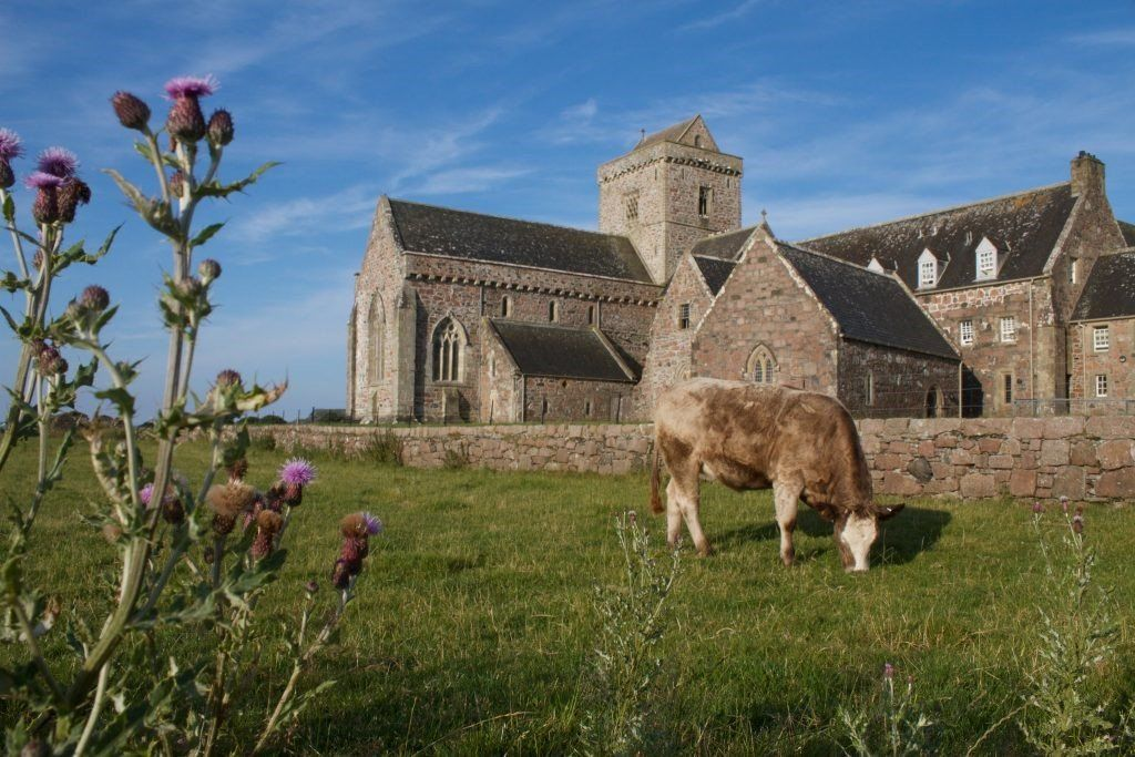 Iona is a tiny island with with a population of around 120 permanent residents. Despite, its contribution to the history of Scotland, and the world is large.