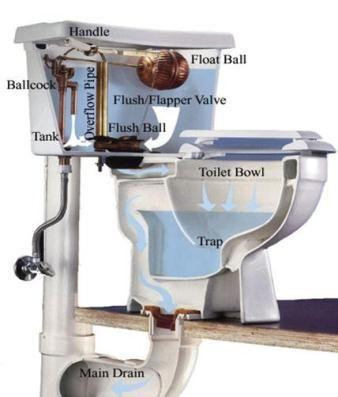 Toilet Reszdjpg 338397 Plumbing Pinterest