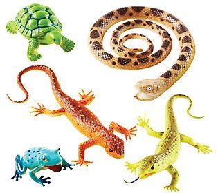 Learning Resources Jumbo Reptiles Amphibians Qvc Com