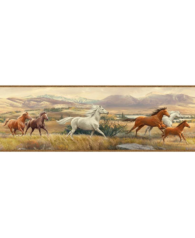 Horses Pre Pasted Wall Border Horses Wallpaper Border Horse Portrait