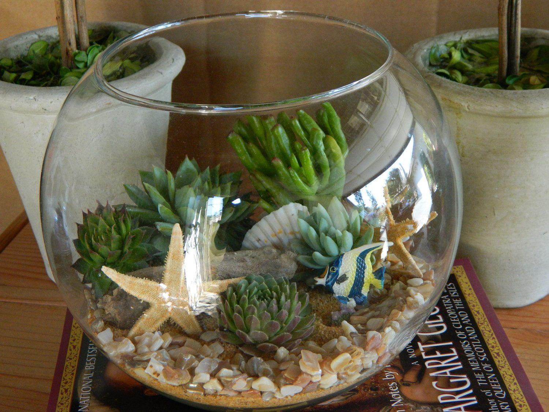 Succulent Garden Fish Bowl Idea Succulent Gardens Succulent