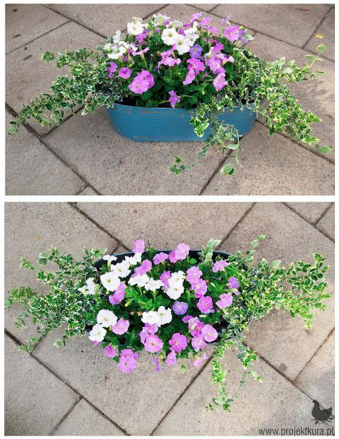 Pin On Small Home Garden