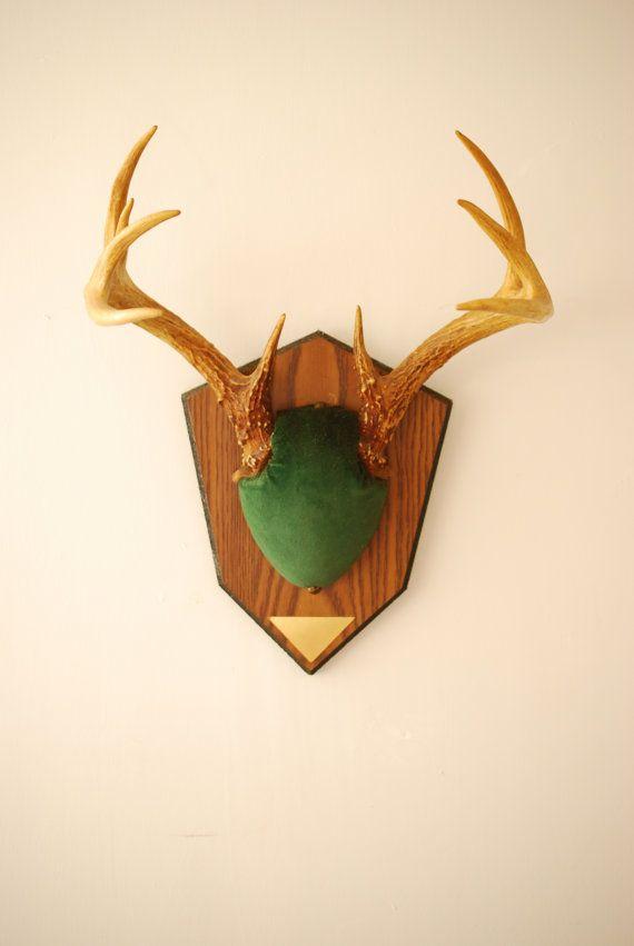Vintage Deer Antler Mount Taxidermy Bone Green 9 Point