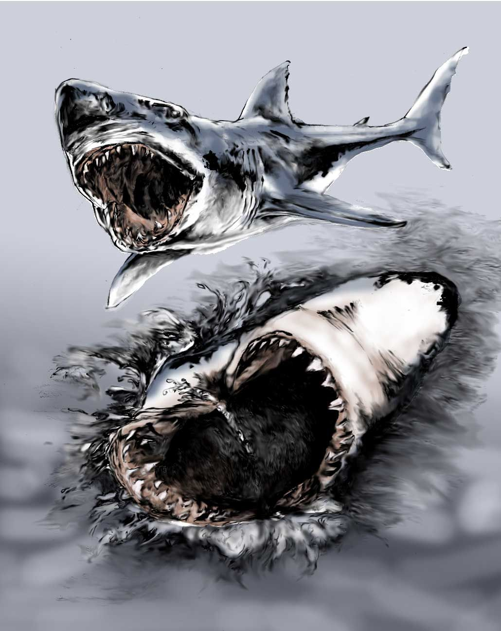 Tatoos Ideas Cool Great White Shark Tattoo Design Drawings