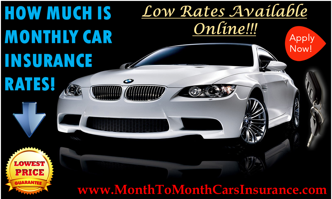Know How Much Is Monthly Car Insurance Quotes Online Get
