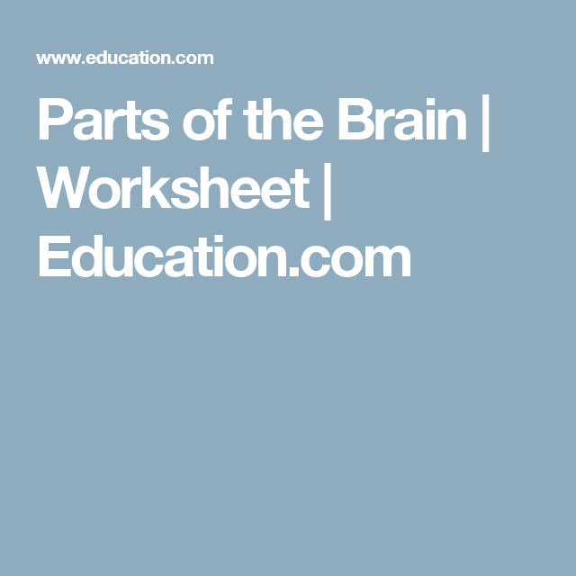 Parts of the Brain | Worksheets, Brain and Homeschool