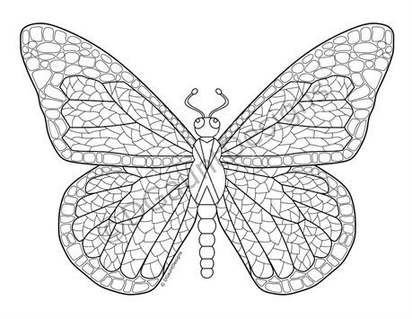 Mosaic Butterfly Digital Adult Coloring Page Designed And Drawn In