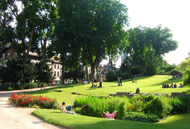 Jardin de l'hôtel de ville | Plante jardin, Jardins et Chat