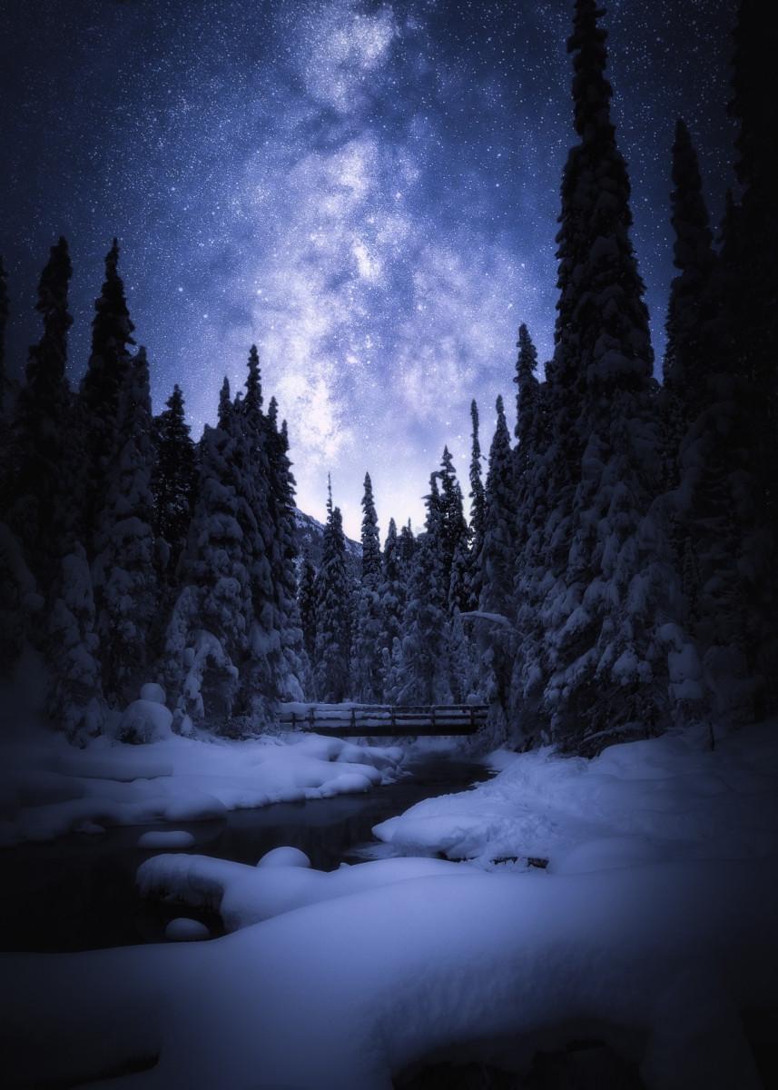 'Magical Night' Metal Poster Print - Conceptual Photography | Displate