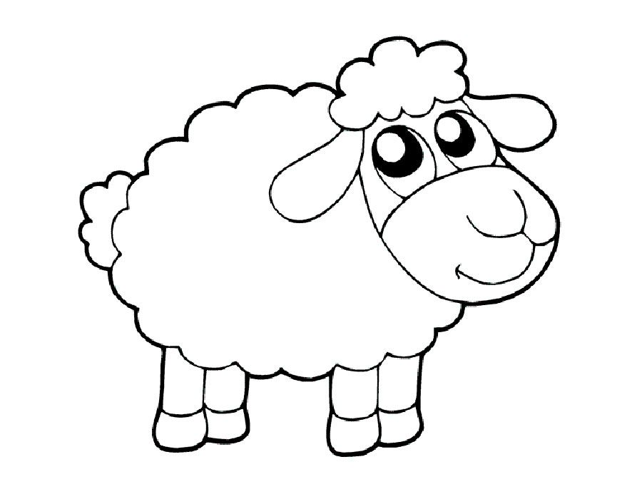Dibujos de ovejas para colorear e imprimir | jac | Sheep drawing