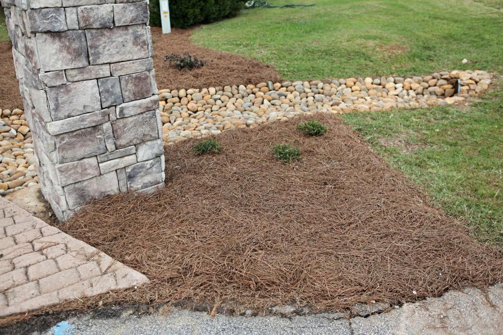 Pin on Landscaping Diy Front as well as Garden