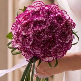 Variegated Carnation Bouquet Carnation Wedding Flowers Carnation Bridal Bouquet Carnation Wedding