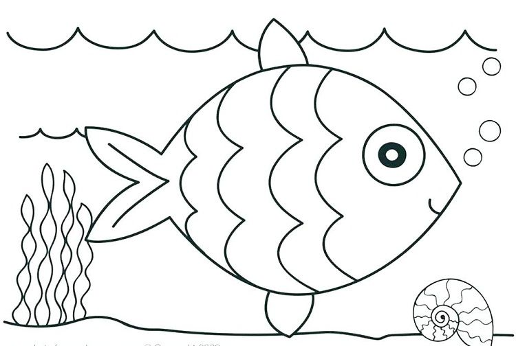 Ocean Coloring Pages For Preschool Coloring Pages Ideas Coloring