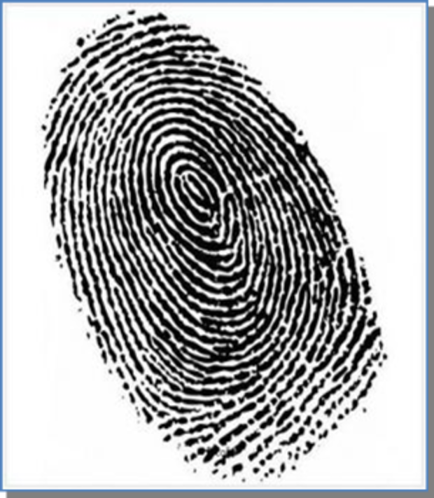 Gestion de classe Private Insvestigator / Détective