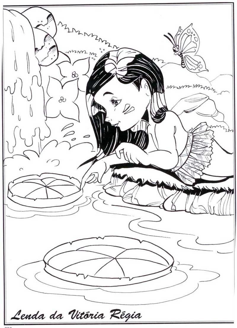 Desenhos De Vitoria Regia Para Colorir Pintar Imprimir Lenda Do
