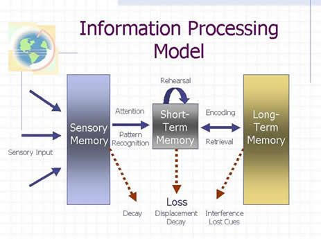 Pin By Gracie S Mom On Information Processing Thoery Information