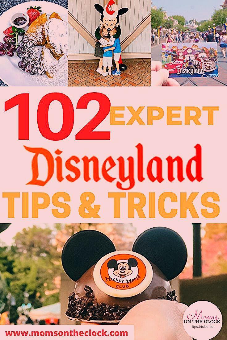 Photo of Disneyland Secrets Kids Disneyland