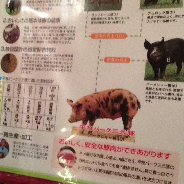 food おしゃれまとめの人気アイデア pinterest yoshiaki saito