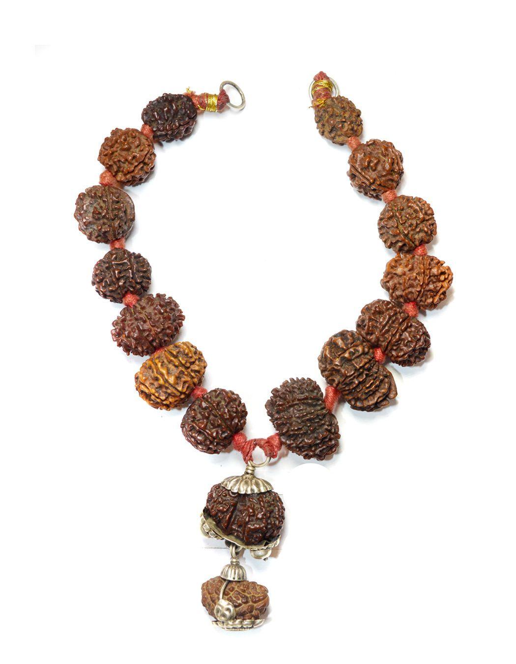 Seed natural nepali rudraksha to mukhi ganesh and