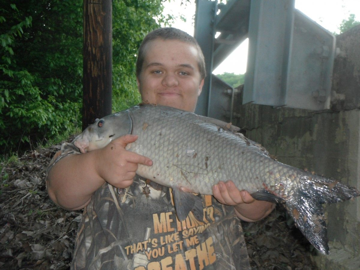 Giant buffalo fish with a huge silver red horse http for Ohio river fish