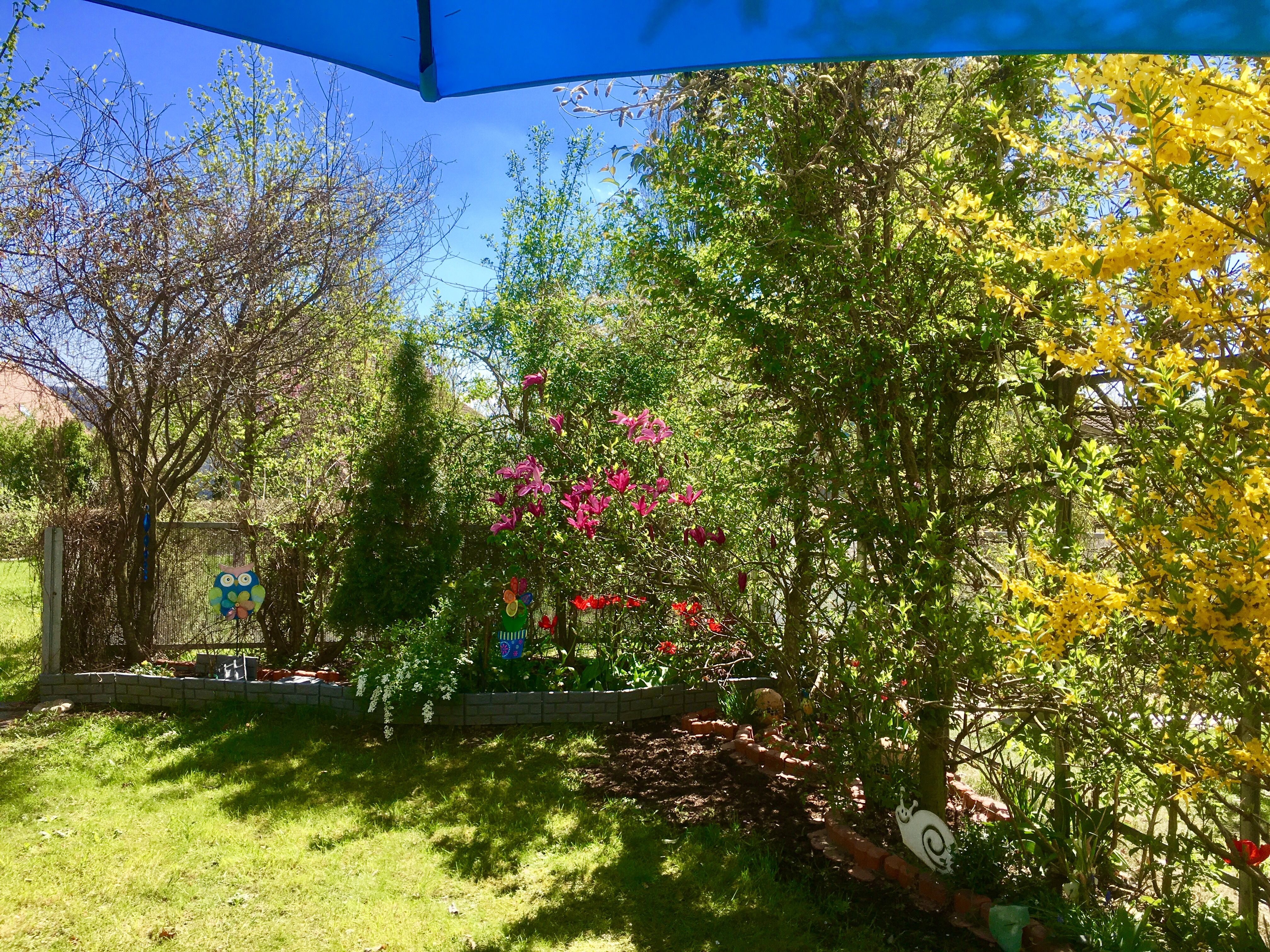Kleiner Garten Grune Oase Gartenkunst Kleiner Garten Garten