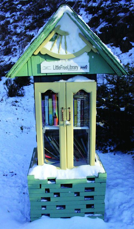 Little libraries spread reading, community across