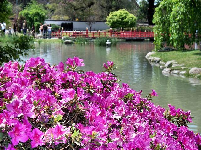 Jardin Japones-Palermo