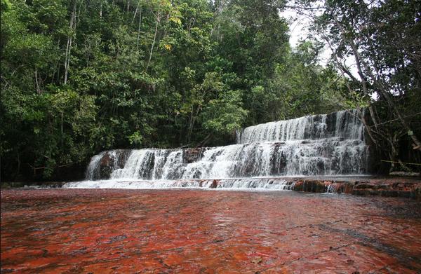 Crean Órgano Superior para velar por Parques y Monumentos Naturales del país http://bit.ly/1vOAM9X