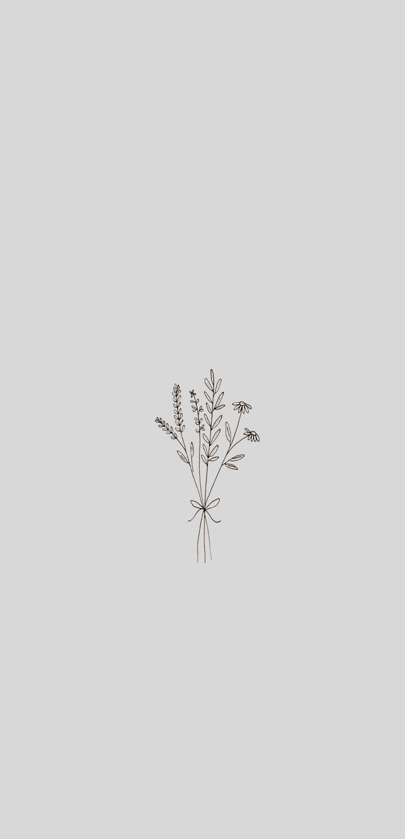 Minimalist Wallpaper Minimalist Wallpaper Minimalist Flowers Plant Background